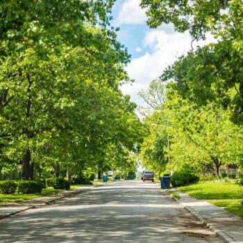 Áreas verdes aumentam qualidade de vida